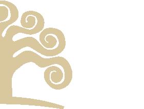 bor design bal